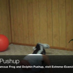 Rolling Pushup062 150x150 Body Weight Exercises   A Complete List