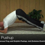 dolphin pushup
