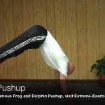 horse pushup