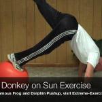 kicking donkey on sun