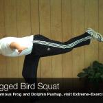 one legged bird squat