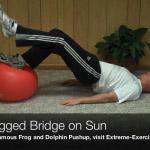 one legged bridge on sun