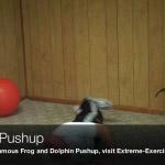 rolling pushup