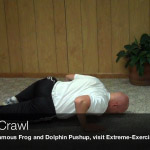 spider crawl