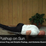 spider pushup on sun