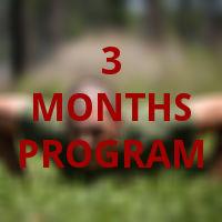 3 months program