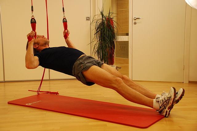 horizontal rows biceps