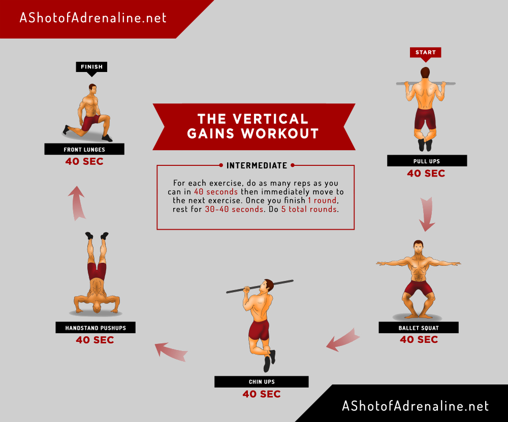 12) The Vertical Gains Workout