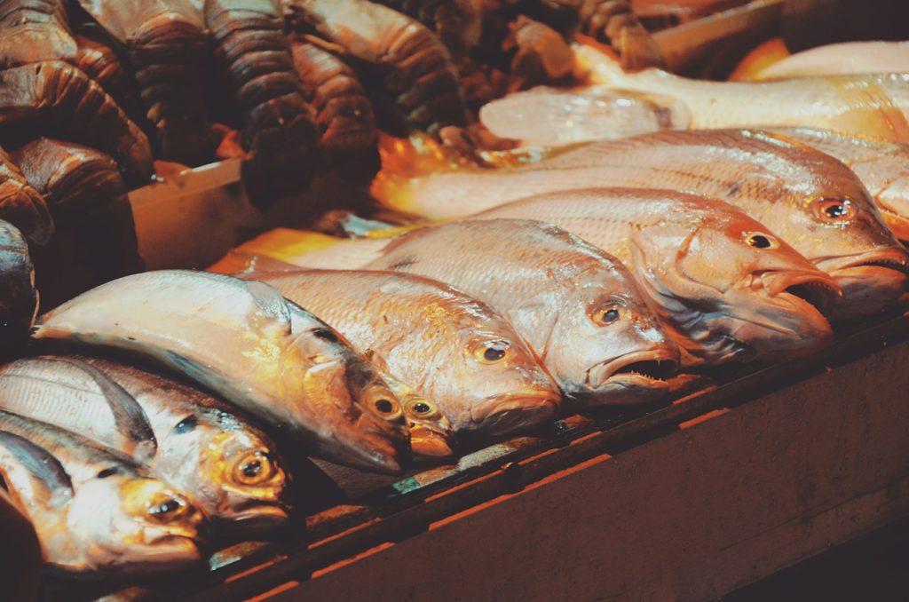 fish-926108_1280