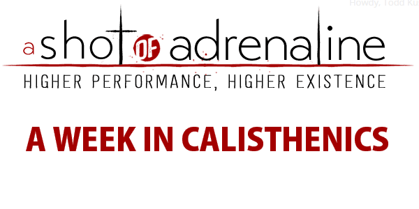 A Week In Calisthenics