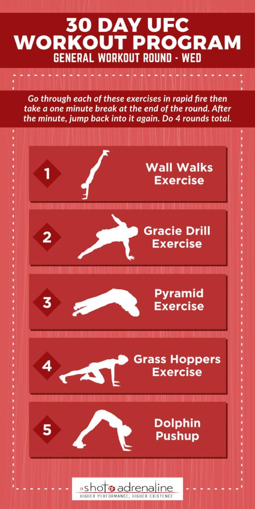 ufc workout program general
