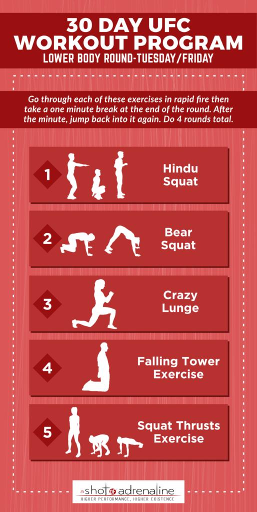 UFC workout program lower body