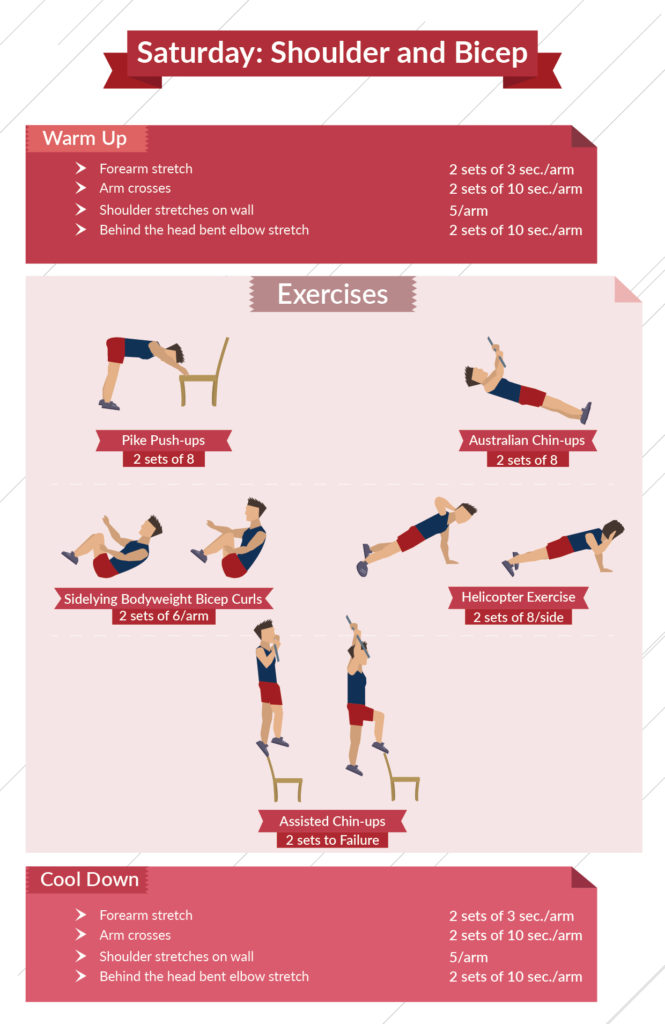 level 3 shoulder and bicep infographic