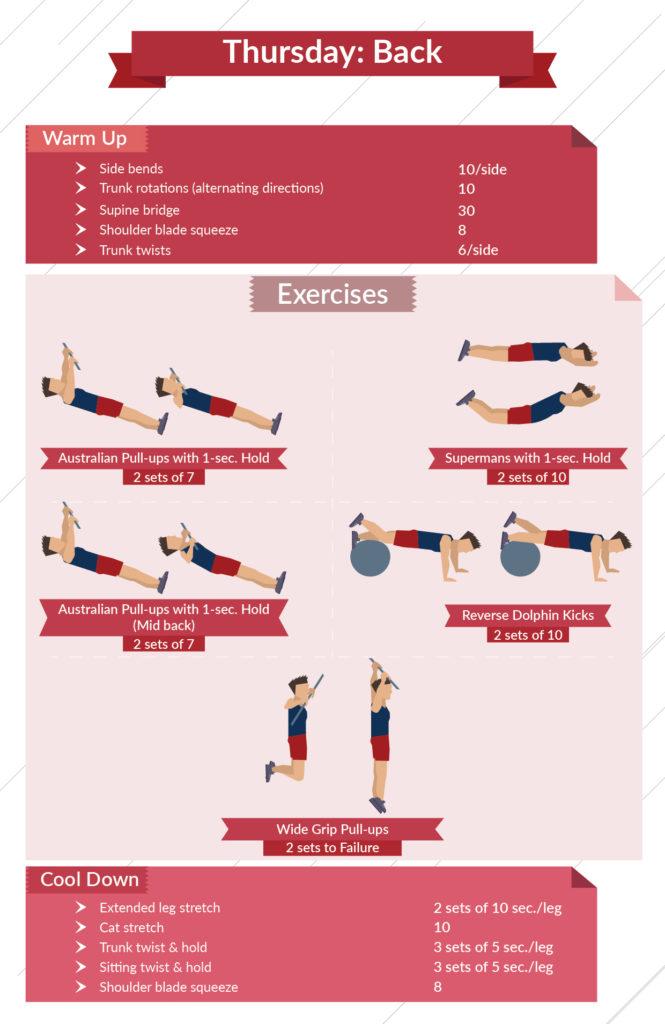 level 3 back infographic