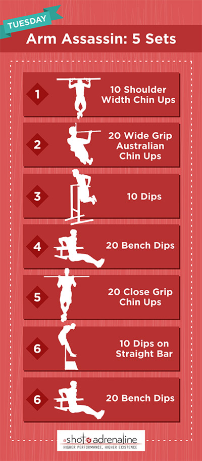 Calisthenics Workout Plans Tuesday Arm Assassin Infographic