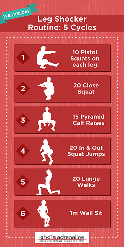 Calisthenics Workout Plans Wednesday Leg Shocker Infographic