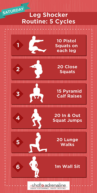 Calisthenics Workout Plans Saturday Leg Shocker Infographic